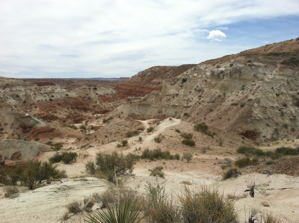 A look back at the canyon and the trail