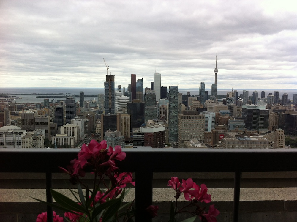 A view of Toronto from a roof top restaurant
